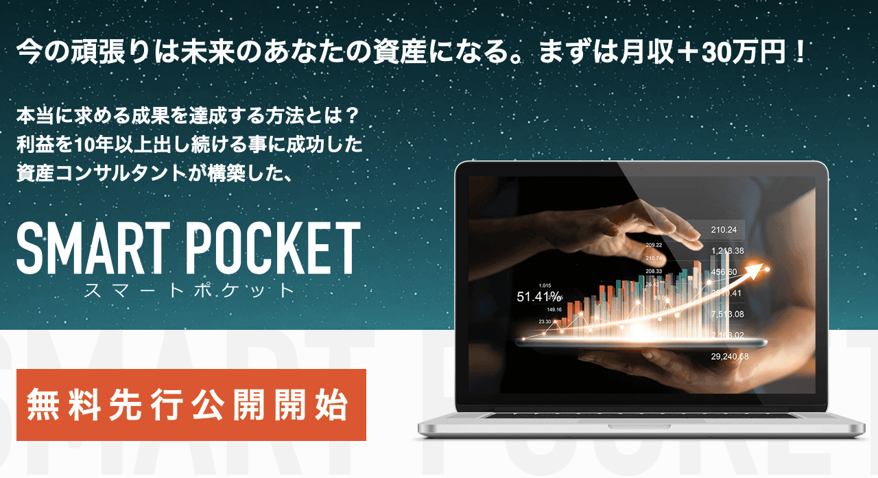 SMART POCKET スマートポケット(RAY)