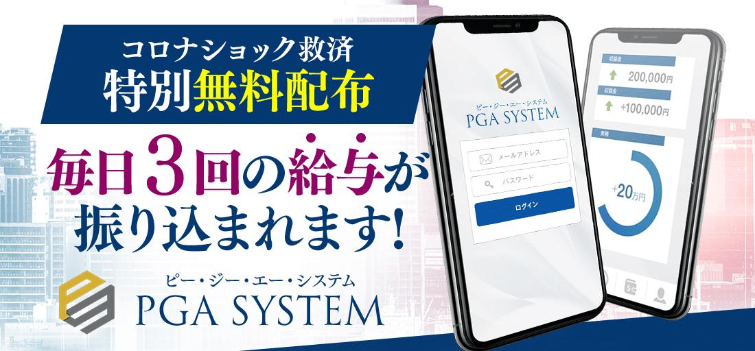 PGAシステム ピージーエーシステム