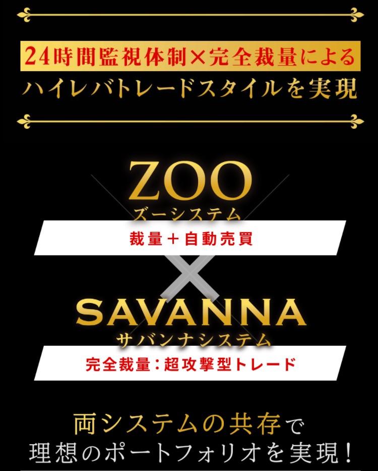 サバンナ savanna 03